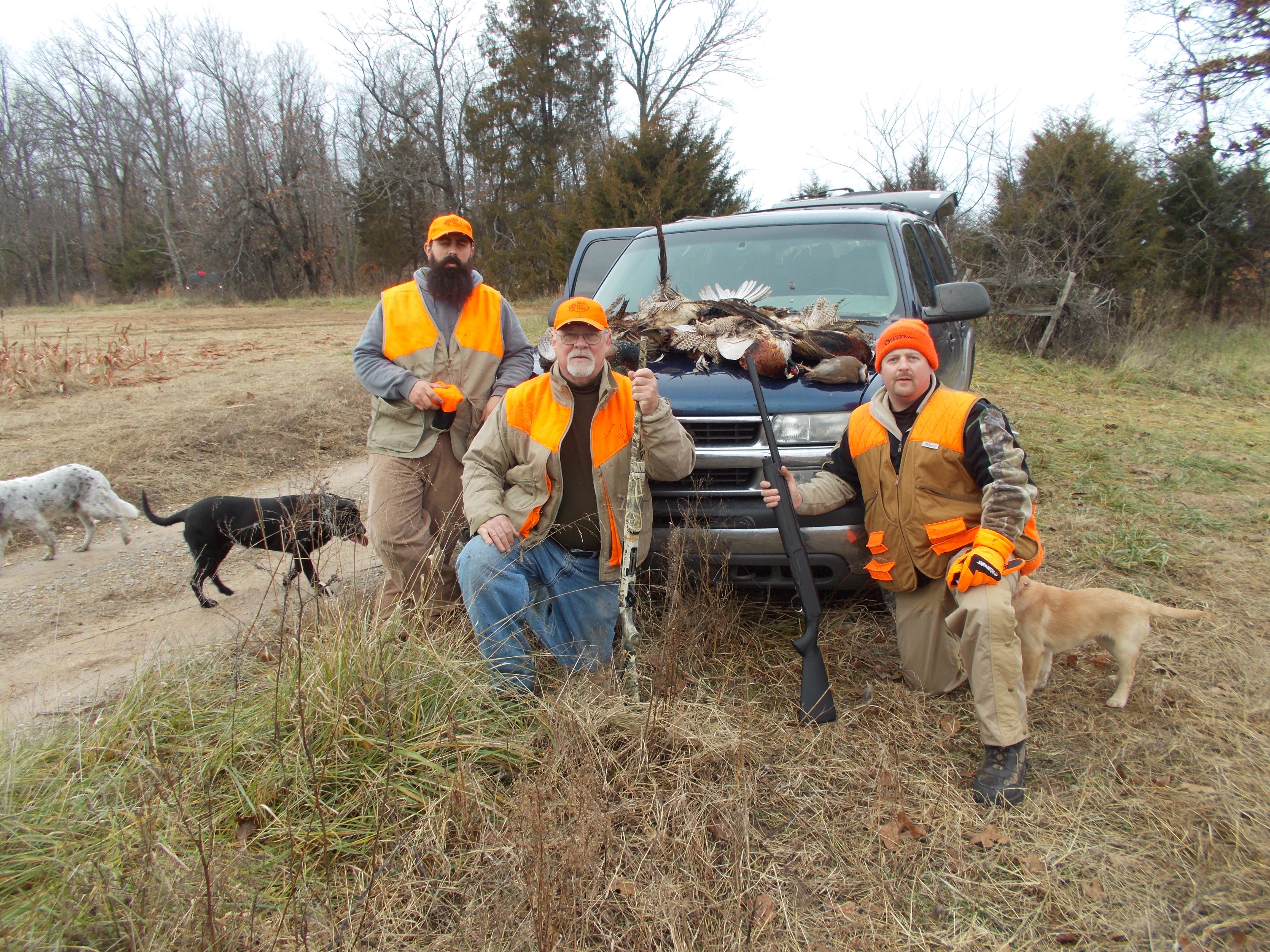 Str Outfitters: Pheasant Hunt