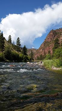 Spinner Fall Guide Service: Provo River  Wade Fishing Trip