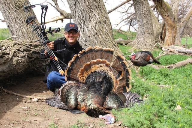 Red Dog Outfitters: Colorado Turkey Hunts
