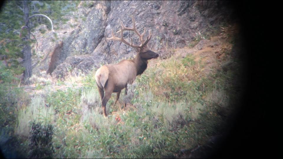 Secret Pass Outfitters: Elk Hunts