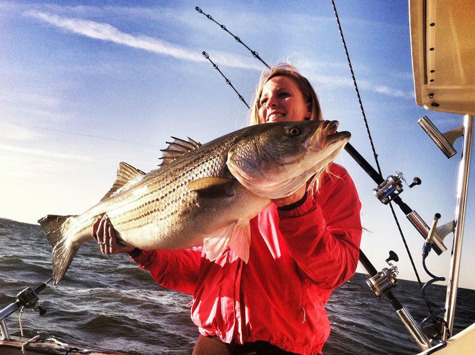 Game Changer Sportfishing: Wreck/Bluefish Fishing Trip