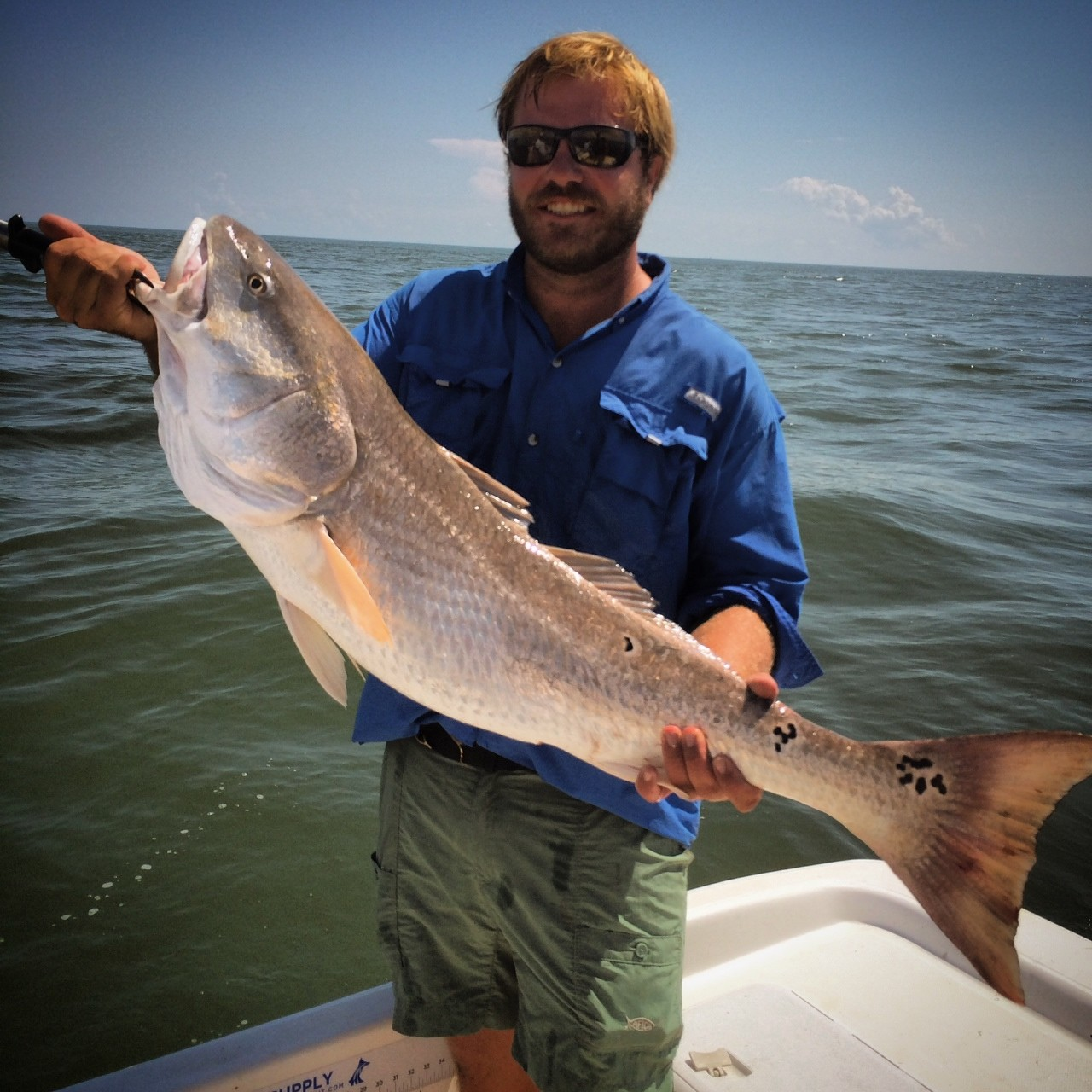 Exclusive Fishing Charters: Inshore Full Day
