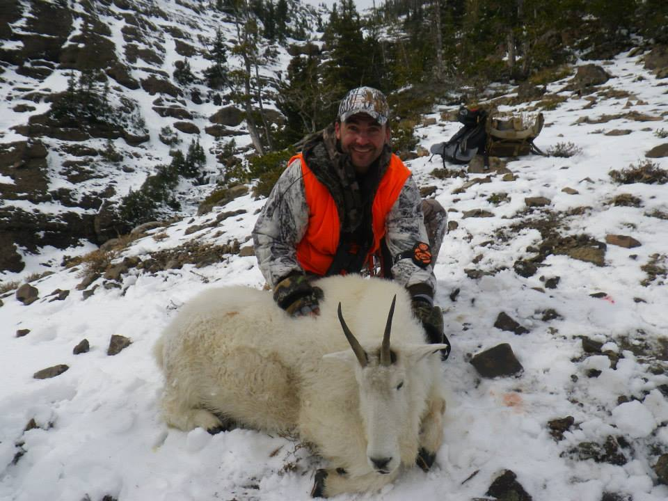 Absaroka Beartooth Outfitters: MOUNTAIN GOAT  HUNT