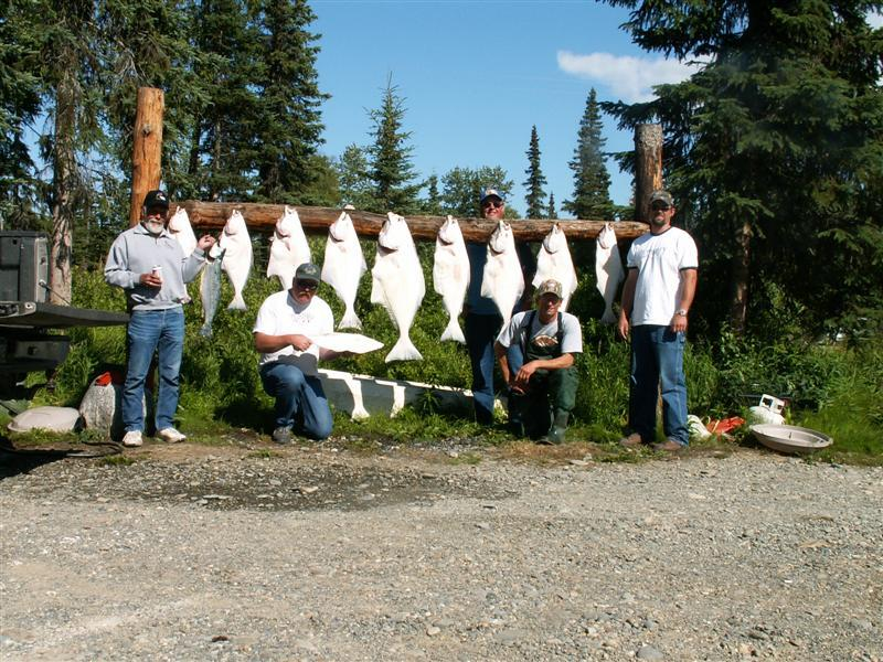 Wildrose Charters And Cabins: PACKAGE #1 2 DAYS FISHING SALTWATER FOR HALIBUT & 3 NIGHTS LODGING