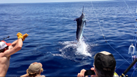 Daymaker Charters South Carolina: Full Day Trip