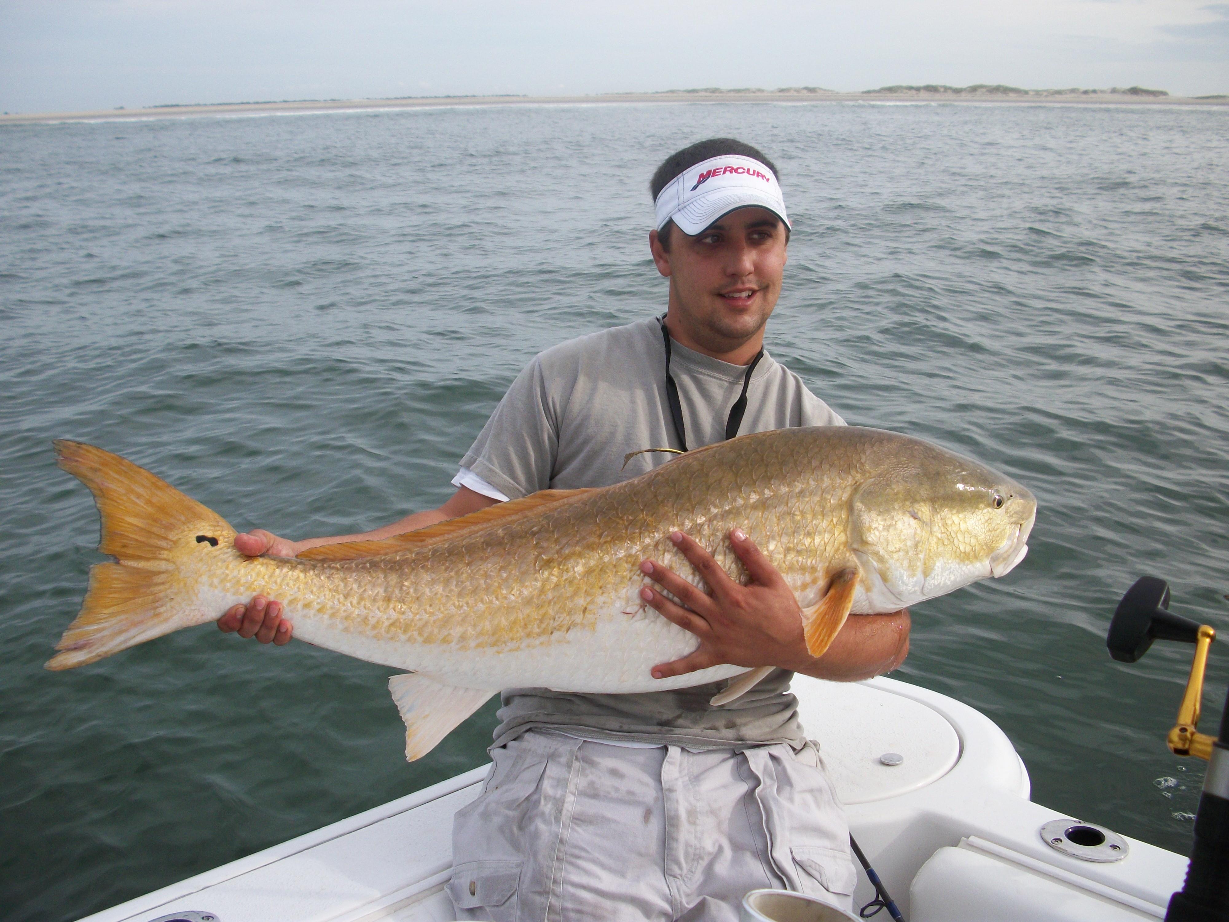 Carolina Style Sportfishing: Inshore Full Day