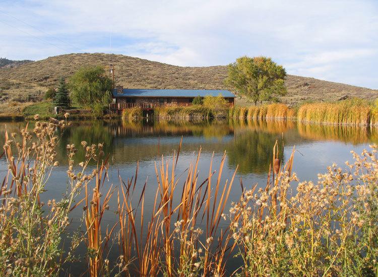 Cross C Ranch: Lodging