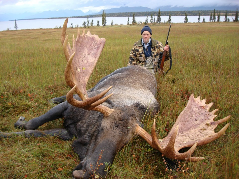 Nushagak Guides And Outfitters: Moose Hunts