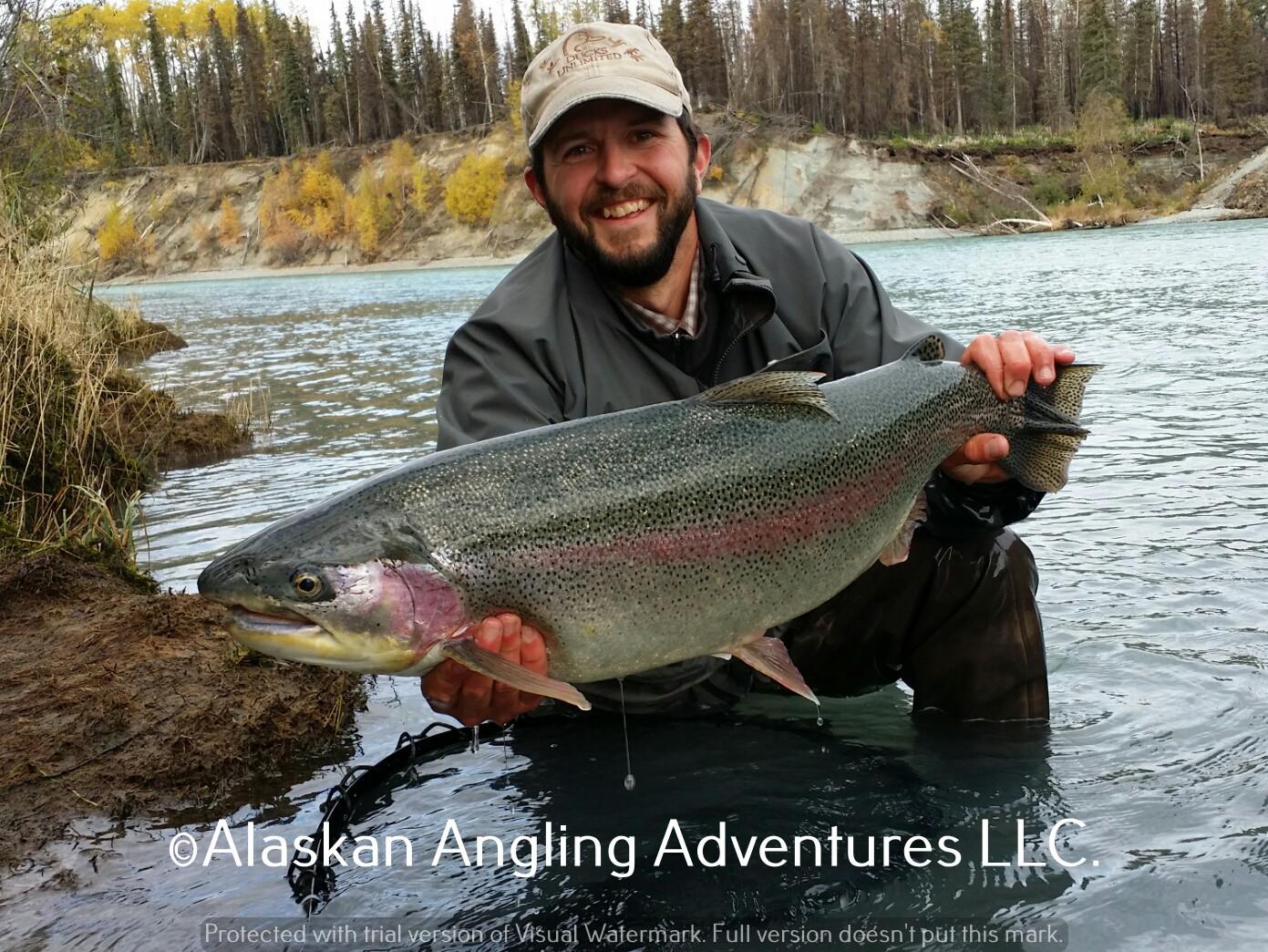 Alaskan Angling Adventures Llc.: Full Day Middle Kenai RiverFishing Trip