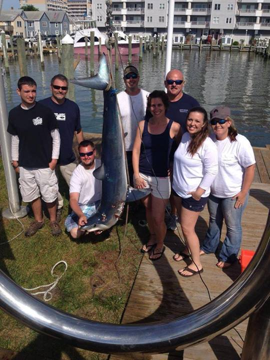 Go Deep Sportfishing Llc T A Muff Diver Charters: Shark Fishing Trip