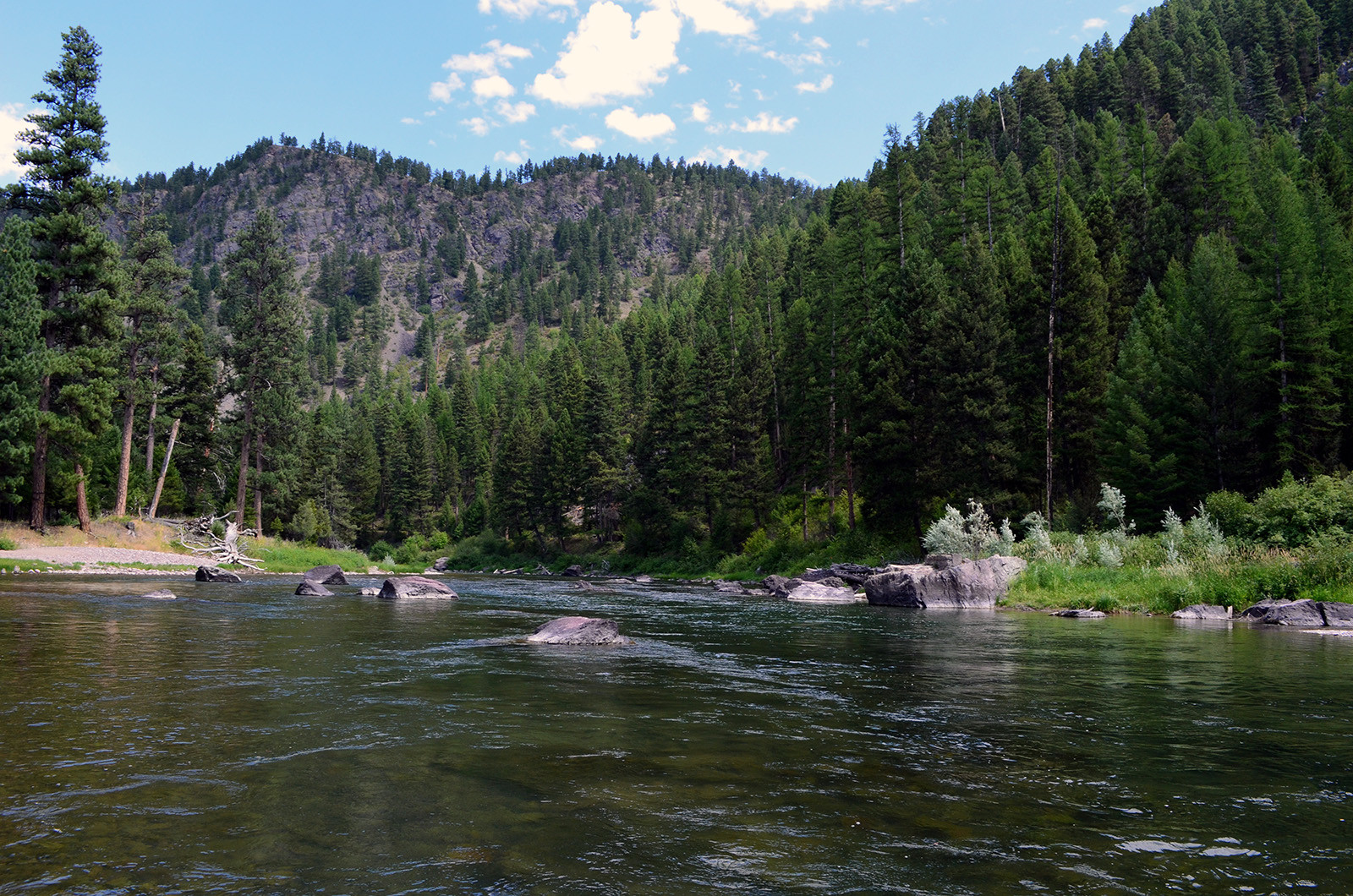 Wapiti Waters Fly Fishing Montana With Jack C. Mauer: Blackfoot River in western Montana