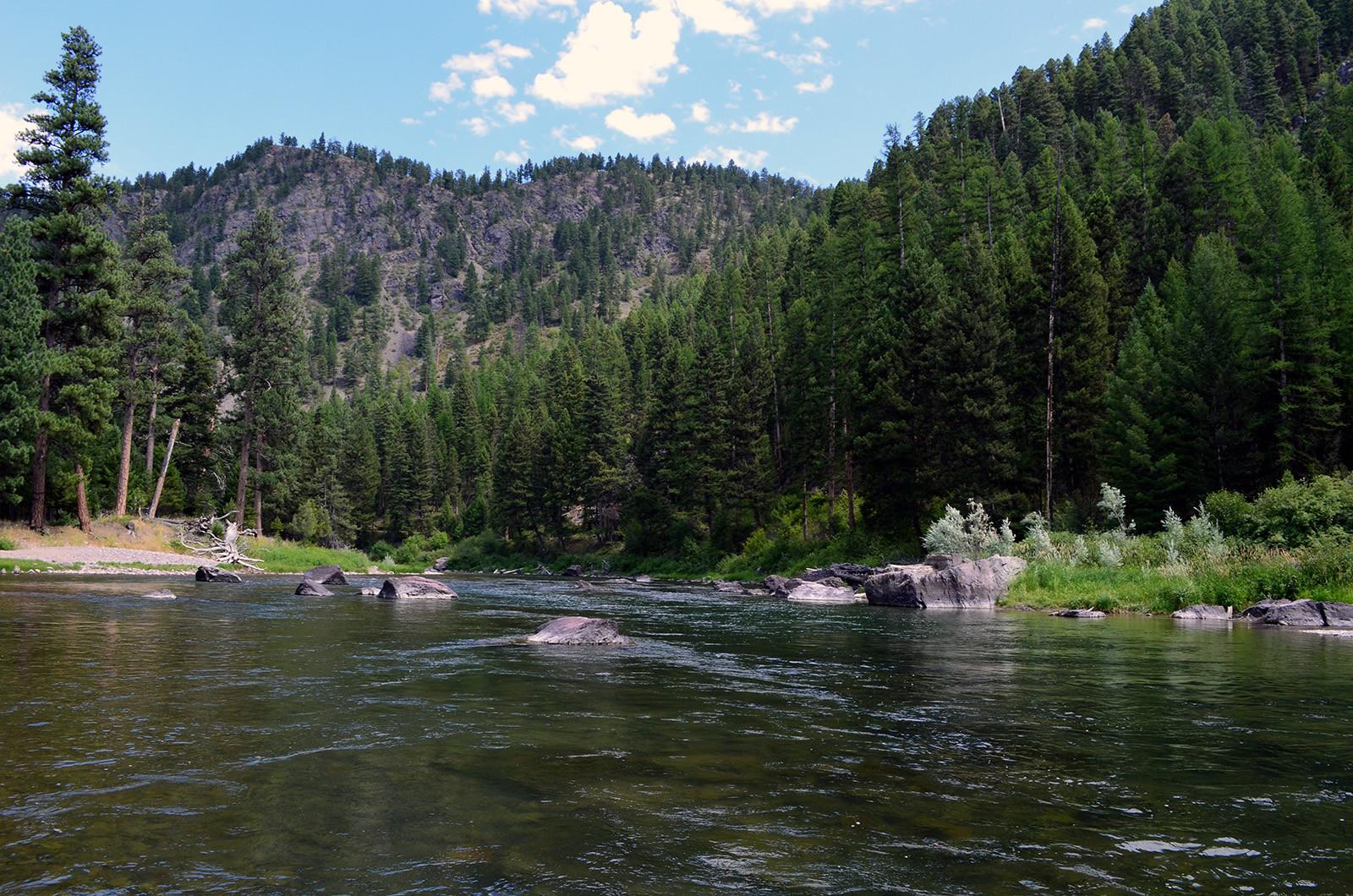 Wapiti Waters Fly Fishing Montana With Jack C. Mauer: Blackfoot River in western Montana