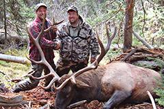 Juniper Mountain Outfitters: Elk Hunts