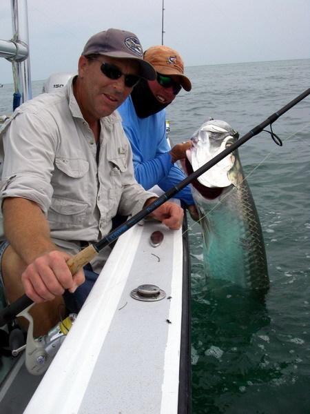 Tampa Fishing Charters Light Tackle Adventures: Tarpon Fishing