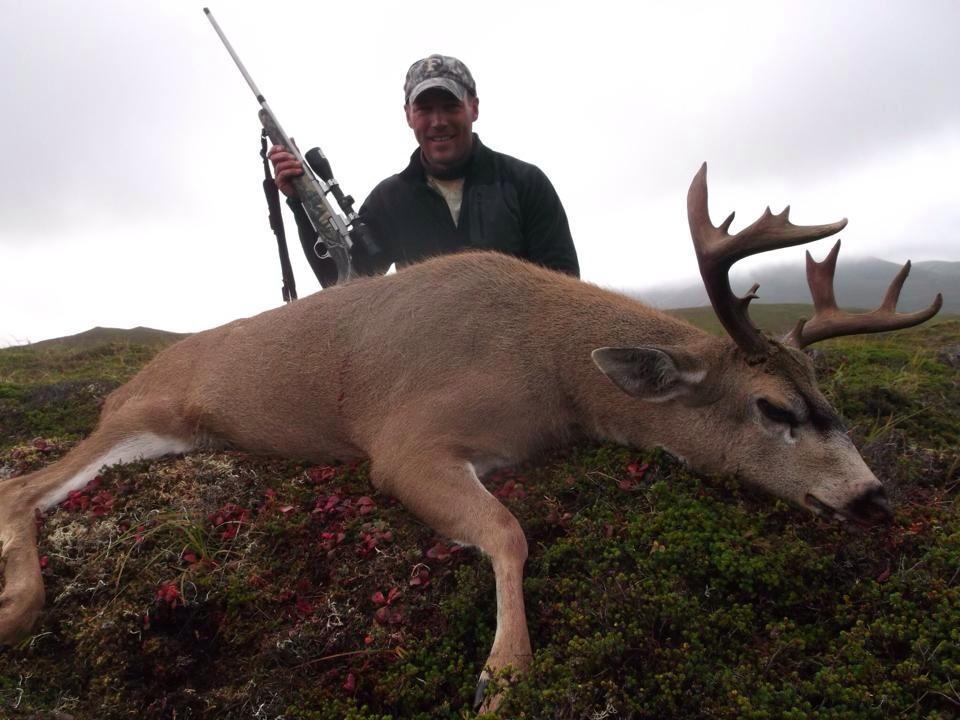 Hunt Alaska Outfitters: SITKA BLACKTAIL  DEER HUNT