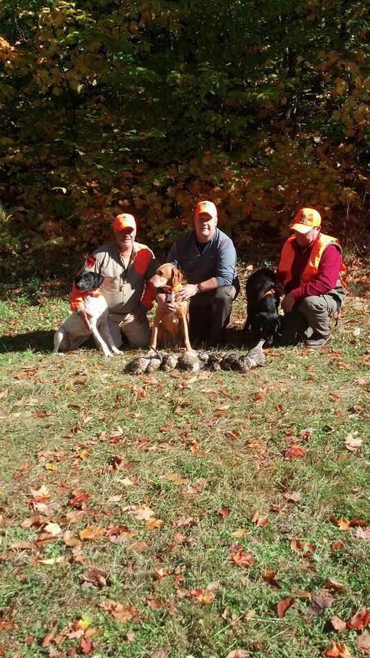 Reddog Guide Service: Grouse hunt