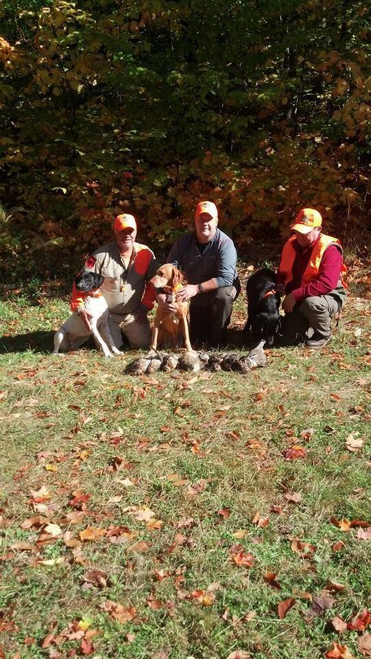 Reddog Guide Service: Grouse hunt