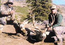 Juniper Mountain Outfitters: Mule Deer Hunts