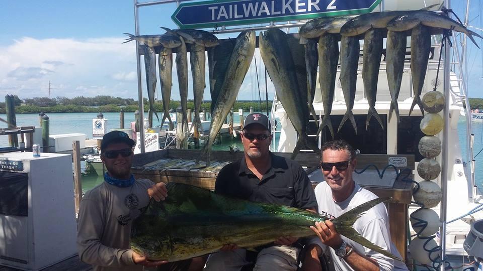 Tailwalker Charters: Tailwalker 2 Mahi Mahi 1/2 Day