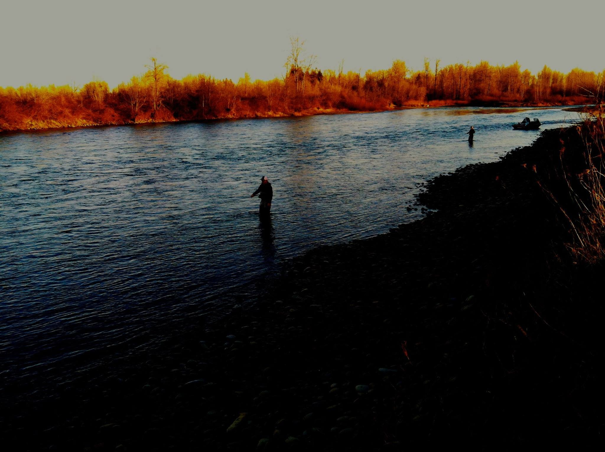 Hammer Down Guide Service: River Fishing - Half Day