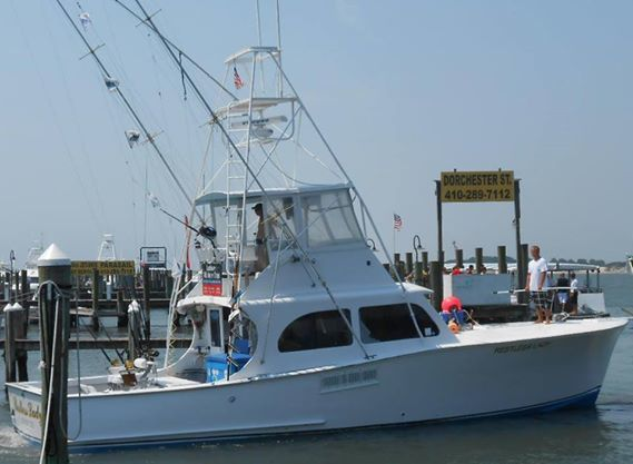 Restless Lady Charters: Inshore/Offshore