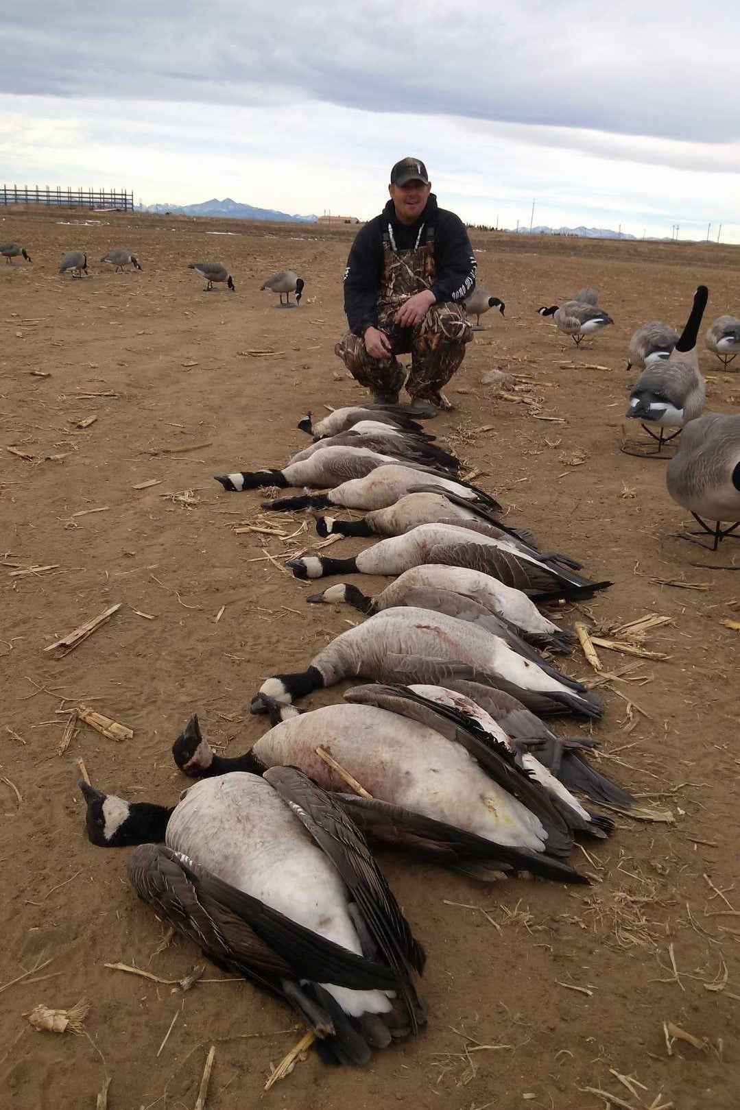 Waterfowl Haven Outfitters: Kansas Spring Snow Goose/Specklebelly/Canada Goose Combo Hunts