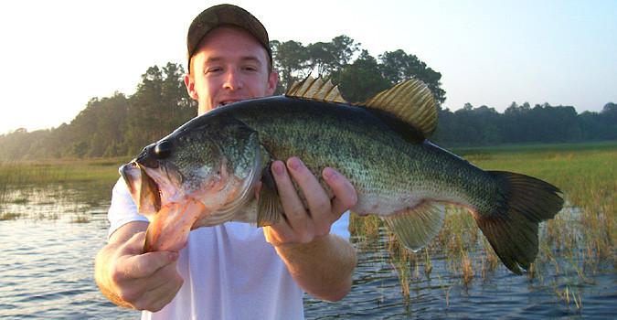 Haulin Bass Fishing Guide Service: 1/2 Day Fishing Trip