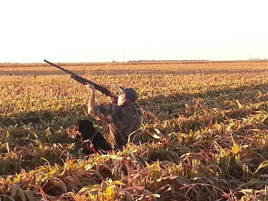 Salt Fork Ranch And Outfitters: Dove Hunts