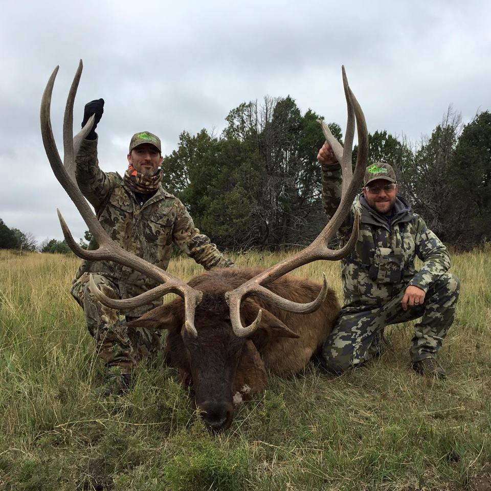 New Mexico Trophy Hunt : Bull Elk Hunt