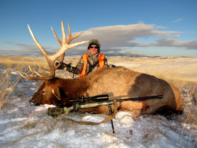 Montana Whitetails: Guided Elk & Whitetail Deer Combo Hunts