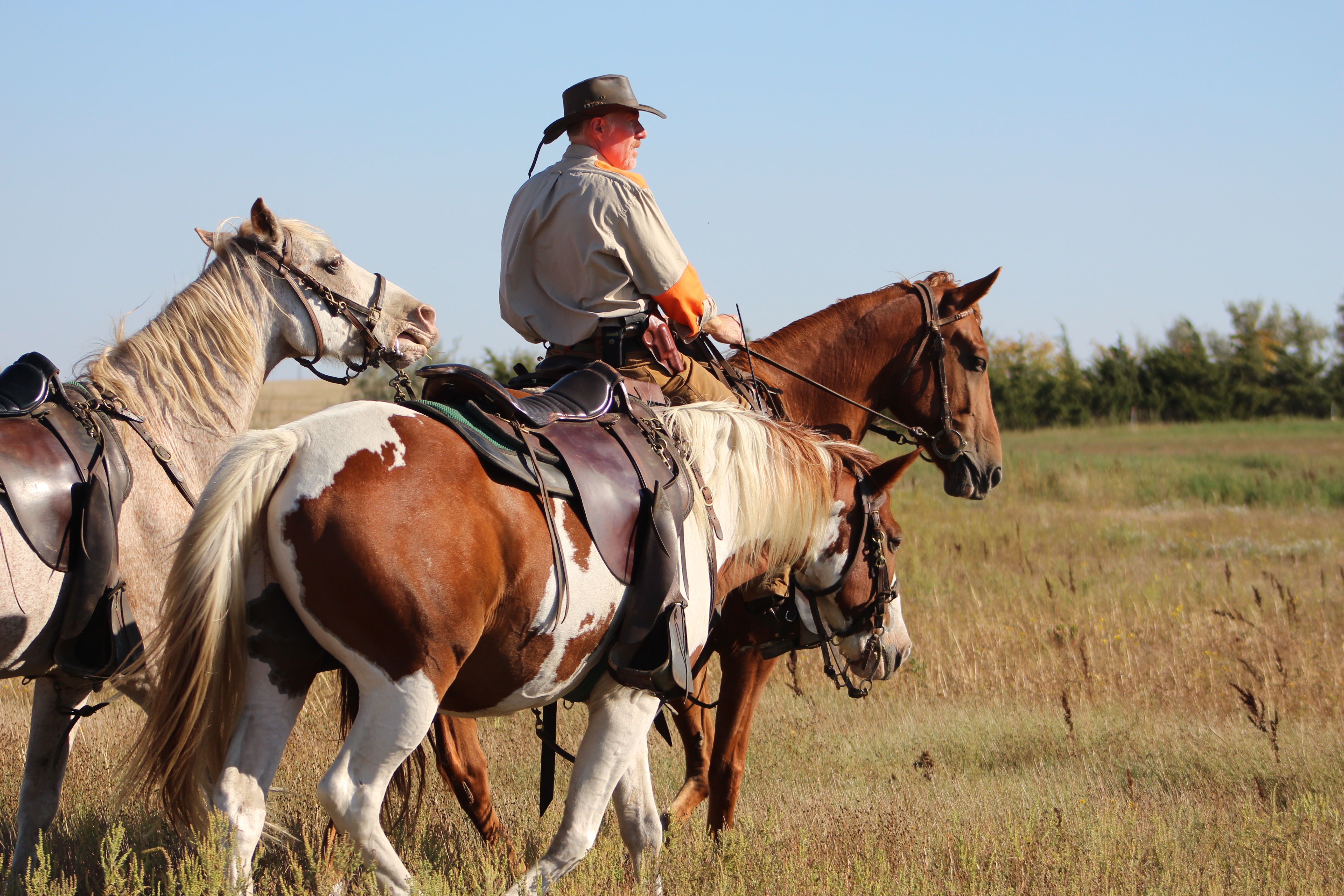 Tinker Kennels, LLC: Three Day Horseback Hunting Expedition