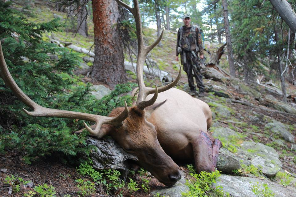 Aei Guide And Outfitter: ARCHERY ELK HUNTING