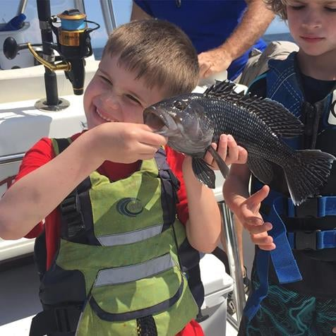 Reelin Pelican Fishing: 4 hours Inshore 1-2 Passagers