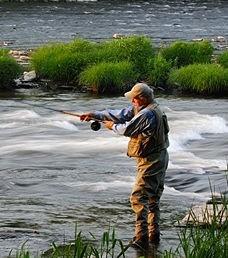 The Douglaston Salmon Run: Fall 1 Afternoon M-Thursday