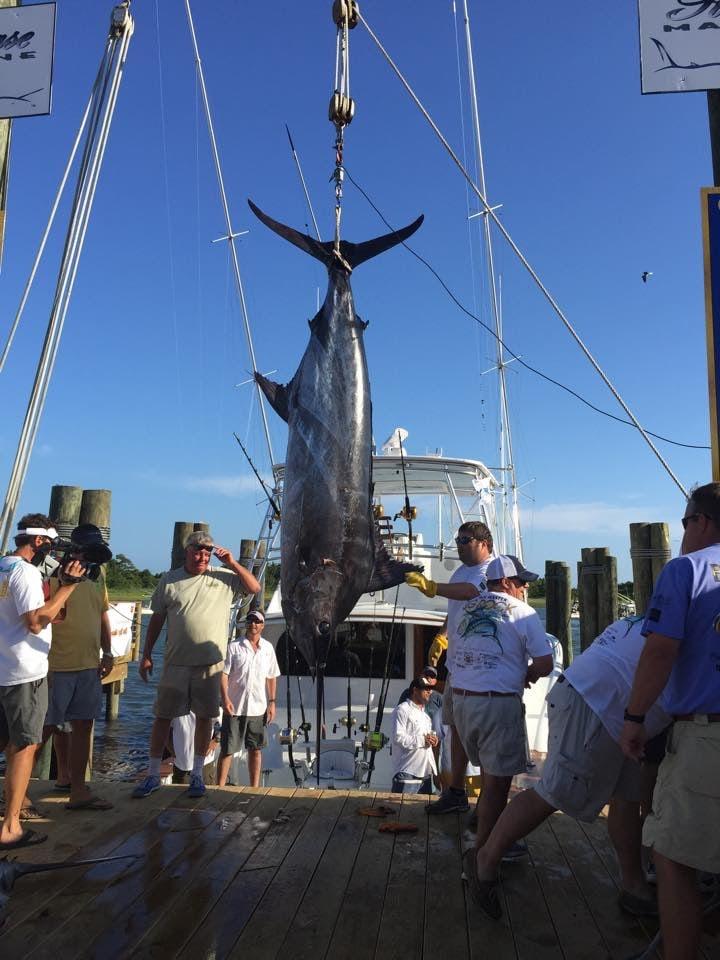 Carly A Sportfishing: Gulf Stream