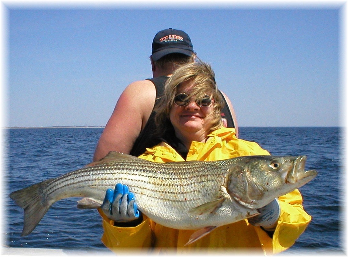 Aquaholic Sport Fishing & Newenglandangler.Com.: Half Day on Regulator