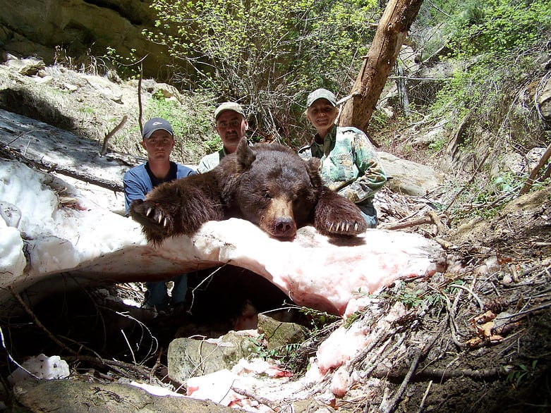 GT Outfitters: Bear Hunts