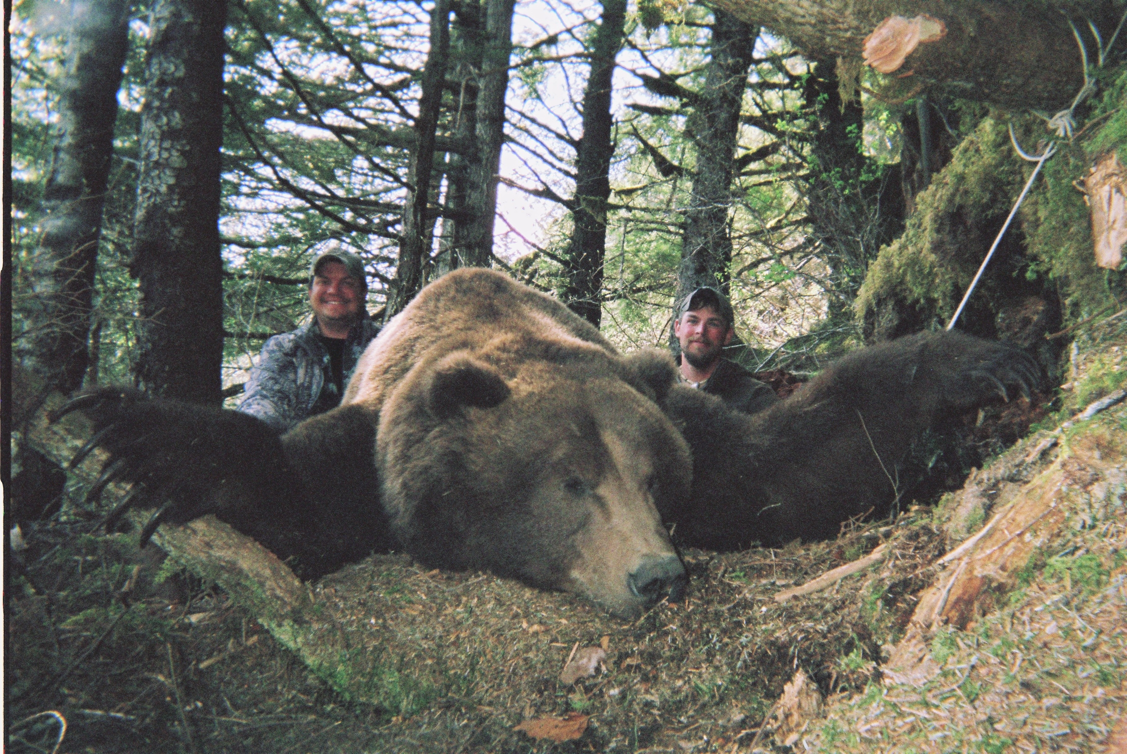 Barela's Alaskan Outfitters: Mountain Goat/Brown Bear Hunt