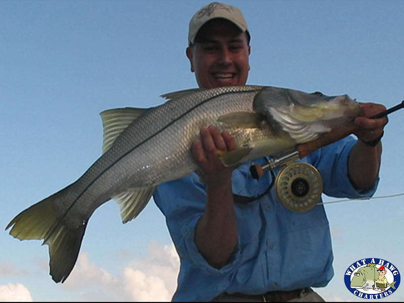 What A Hawg Charters: Light Tackle Inshore Fishing Charter