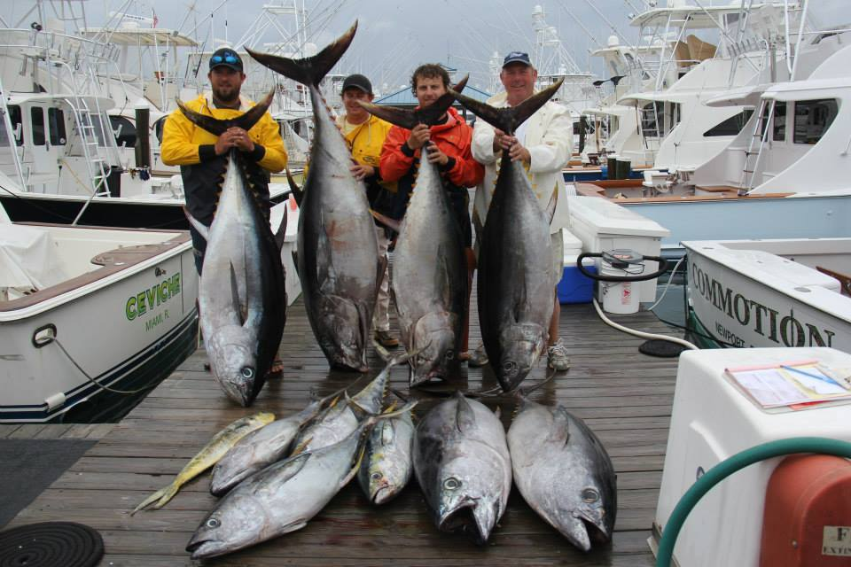 Full Pull Sportfishing Charters: East Coast Charter