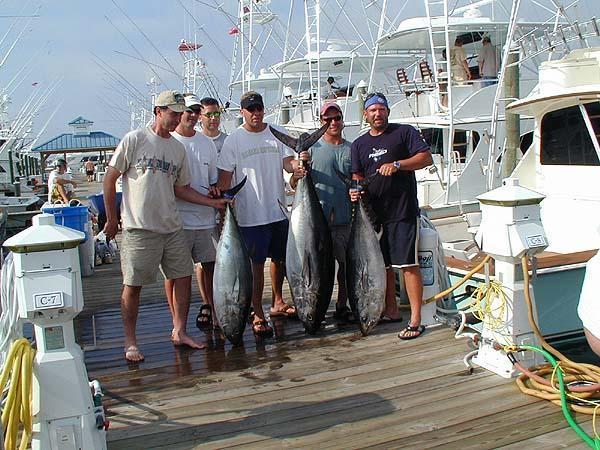 Marli: Chesapeake Bay Rockfishing