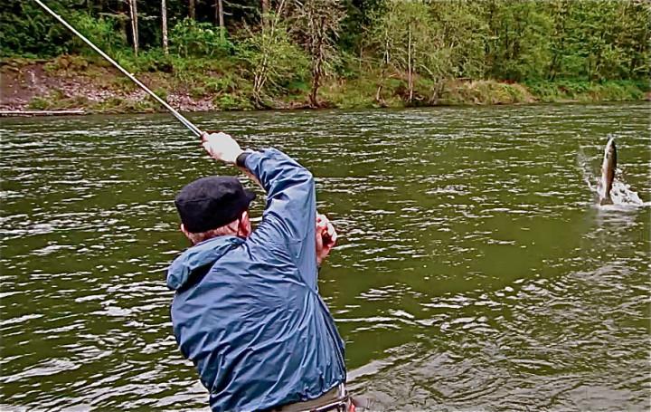 Little Creek Outfitters Oregon: Clackamas River Steelhead Day Trips