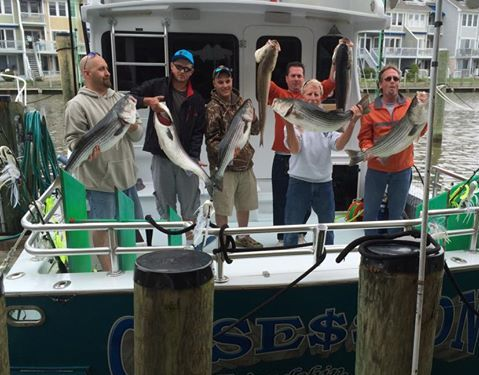 Obsession 45 Sport Fishing: Full Day Trip