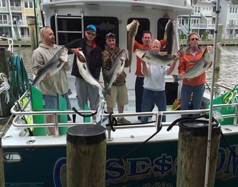 Obsession 45 Sport Fishing: Full Day Trip