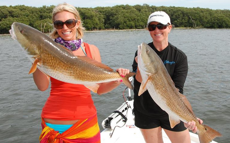 Captain Ryan Farner Fishing: Tampa Bay Offshore Fishing 1/2 Day