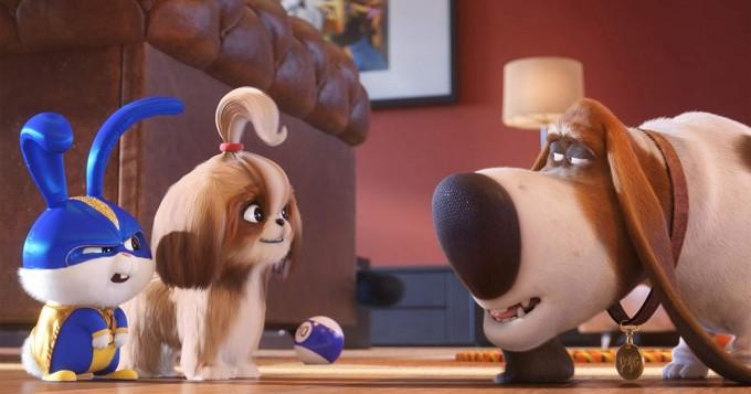 Viaplay lapsiperheille: Lemmikkien salainen elämä 2 nyt katsottavissa
