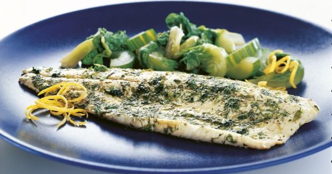Hellekelit ja kala: näin säilytät ja kuljetat kalaa oikein