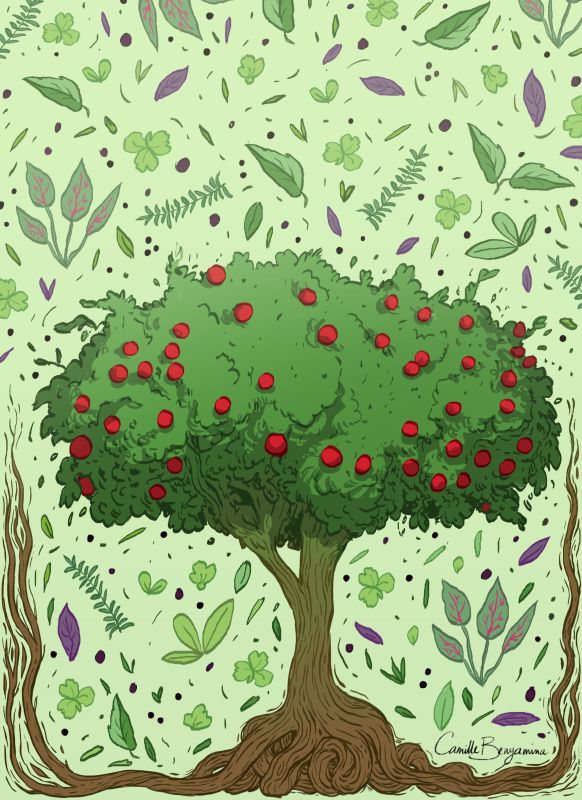 Produits du monde végétal (arbres, arbustes, plantes)