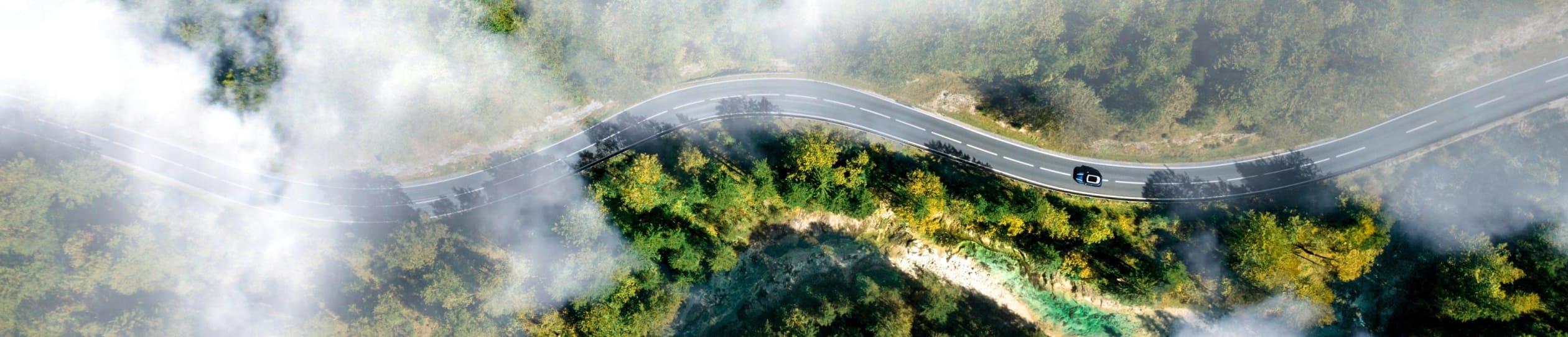 Ein Auto auf einer Straße die durch einen Wald führt