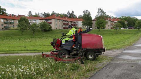 Känner du doften av nyklippt gräs?